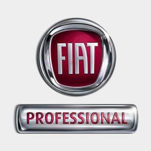 Fiat professional auto nuove